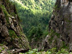 Wanderlottenhochgebirge2806 082